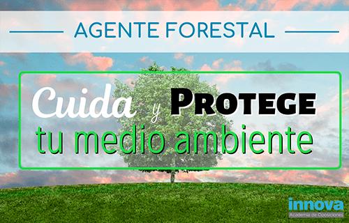 La importancia de los Agentes Forestales