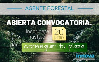 Convocadas 50 plazas para Agente Forestal de la CAM