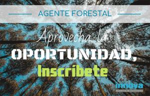 oposiciones agente forestal