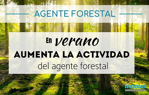 Cómo trabaja un agente forestal en verano
